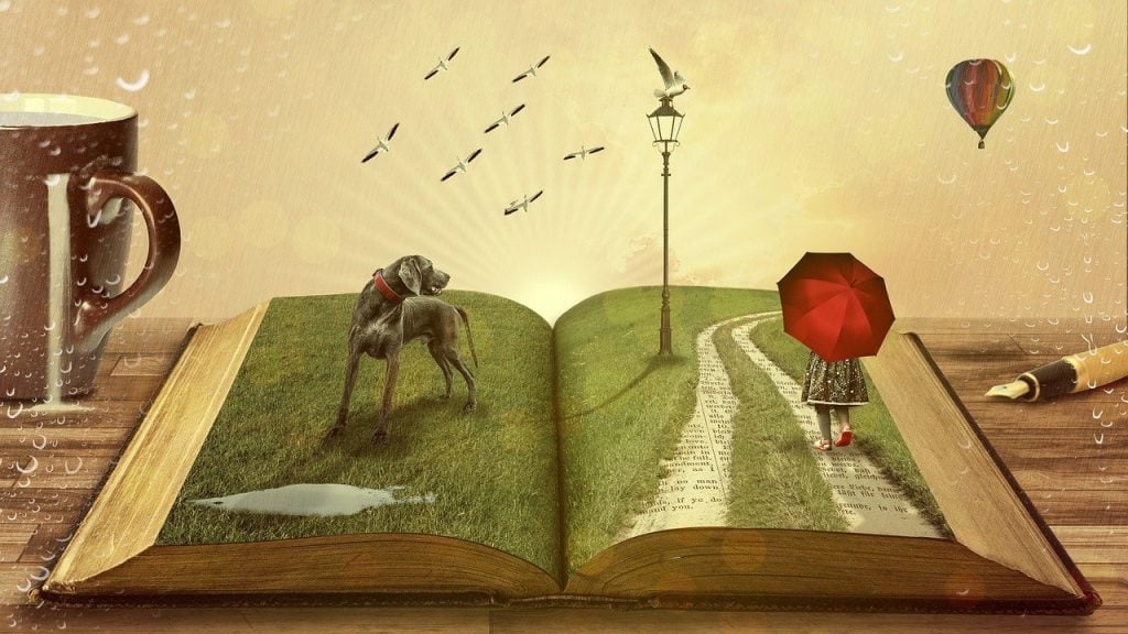 bir alanda yol gösteren kitap önerisi